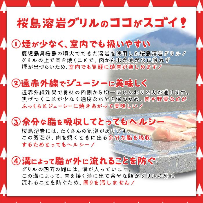 桜島溶岩グリル取手付のポイント